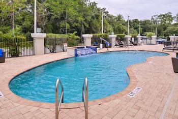 坦帕北 I-75 - 大學區智選假日飯店 - IHG 飯店 Holiday Inn Express Tampa N I-75 - University Area, an IHG Hotel