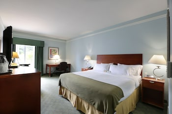 Room, 1 King Bed, Accessible, Non Smoking (Hearing, Mobility)