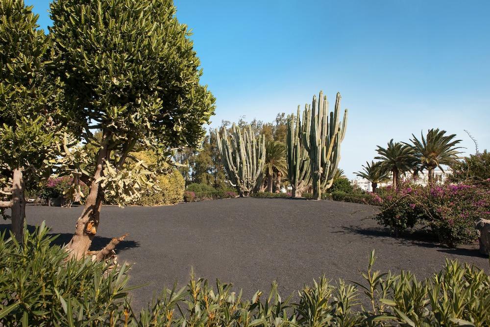 렐락시아 올라비나(Relaxia Olivina) Hotel Image 51 - Property Grounds