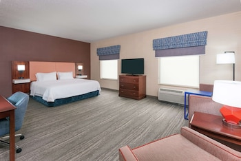 Studio, 1 King Bed, Accessible (Mobility & Hearing, Roll-in Shower)