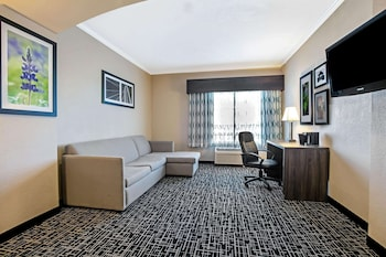 Deluxe Suite, 1 King Bed, Non Smoking (Deluxe Family Suite)