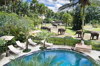 Hotel - Mason Elephant Lodge