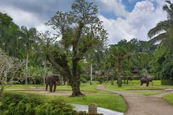 Elephant Safari Park Lodge - View from Hotel  - #0