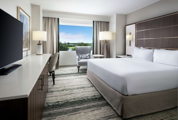 Room, 1 King Bed, Accessible (Disney View)