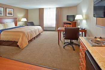 Studio Suite, Accessible (Roll-In Shower)