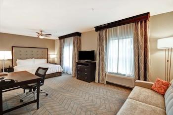 坦帕-里奇港希爾頓欣庭飯店