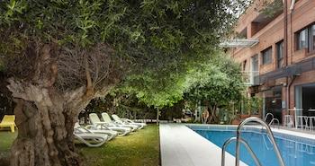 Promocje AACR Hotel Monteolivos