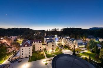 Hotel - Grand Hotel Sava Superior