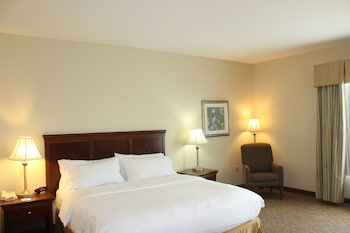 Suite, 1 King Bed with Sofa bed, Accessible, Bathtub (Mobility)