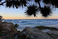 Whale Watch Ocean Beach Resort
