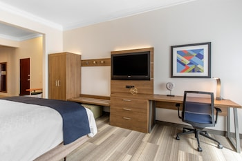Suite, 1 Queen Bed, Accessible, Bathtub (Mobility)