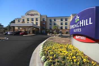 Featured Image at SpringHill Suites by Marriott Charleston N./Ashley Phosphate in North Charleston