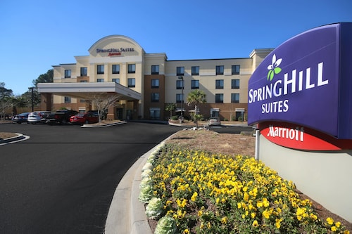 . SpringHill Suites by Marriott Charleston N./Ashley Phosphate