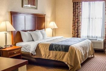Comfort Inn And Suites Kent - Guestroom  - #0