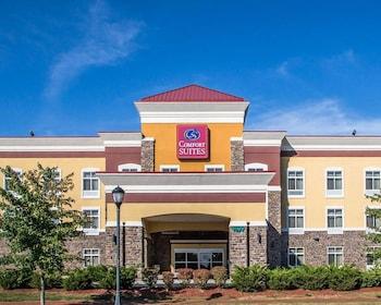 Hotel - Comfort Suites Troy