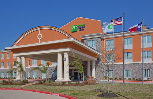 . Holiday Inn Express Hotel & Suites Clute - Lake Jackson, an IHG Hotel