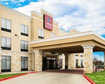 Hotel - Comfort Suites Pflugerville - Austin North
