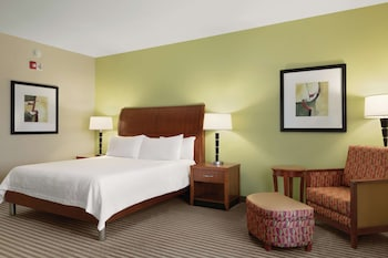 Room, 1 King Bed, Accessible, Bathtub (Hearing & Mobility)