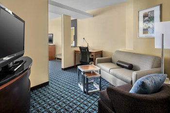 Suite, 1 King Bed with Sofa bed