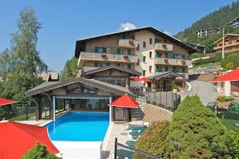 Hotel - Hotel l'Hermine Blanche