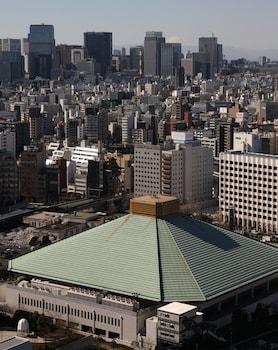 DAIICHI HOTEL RYOGOKU View from Property