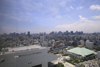 DAIICHI HOTEL RYOGOKU View from Room