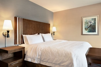Room, 1 King Bed, Non Smoking (Hearing & Mobility)