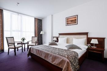 Classic Tek Büyük Yataklı Oda, Şehir Manzaralı
