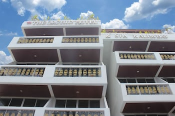 Hotel - Orchid Hotel and Spa