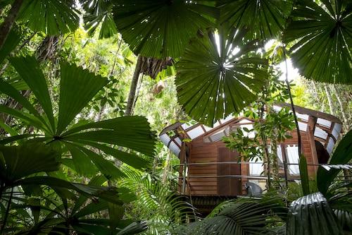 . Daintree Wilderness Lodge