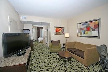 One king junior suite evolution room