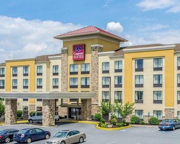 Hotel - Comfort Suites Hummelstown - Hershey