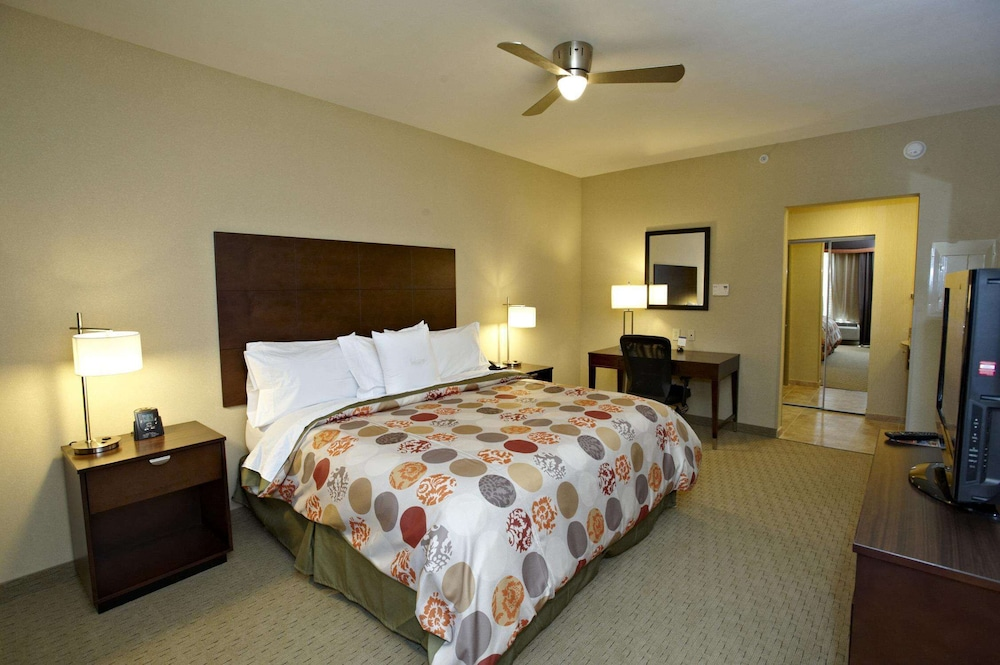 Premier Room, Accessible (Roll-In Shower)