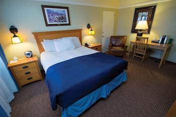 Standard Room, 1 Queen Bed Street Level