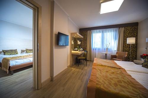 . Hotel Sopron