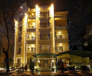 Hotel - Meg Lozenetz Hotel