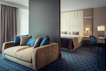 Junior Suite (Free SPA entrance & Executive Lounge)