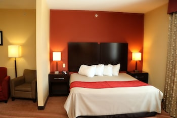 Standard Suite, 1 King Bed with Sofa bed, Non Smoking (1 Person Sofa Bed)