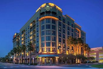 傑克遜維爾市區-南岸希爾頓欣庭飯店 Homewood Suites by Hilton Jacksonville Downtown-Southbank