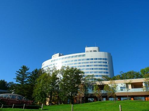 . Shin Furano Prince Hotel