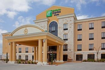 凱蒂智選假日飯店及套房 Holiday Inn Express Hotel & Suites Katy, an IHG Hotel
