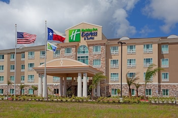 休斯頓宇航中心淨湖智選假日套房飯店 Holiday Inn Express Hotel & Suites - Houston Space Center, an IHG Hotel