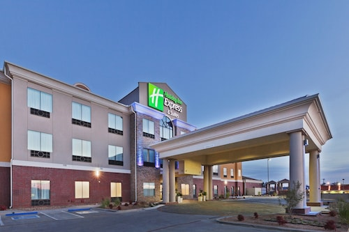 . Holiday Inn Express Hotel & Suites Brownfield
