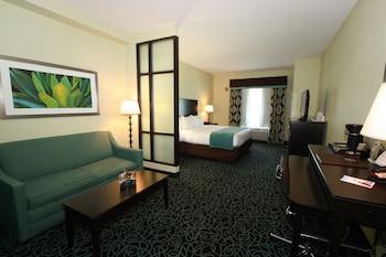 Suite,1 King Bed, Non Smoking, Refrigerator & Microwave
