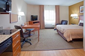 Studio Suite, 1 Queen Bed, Non Smoking