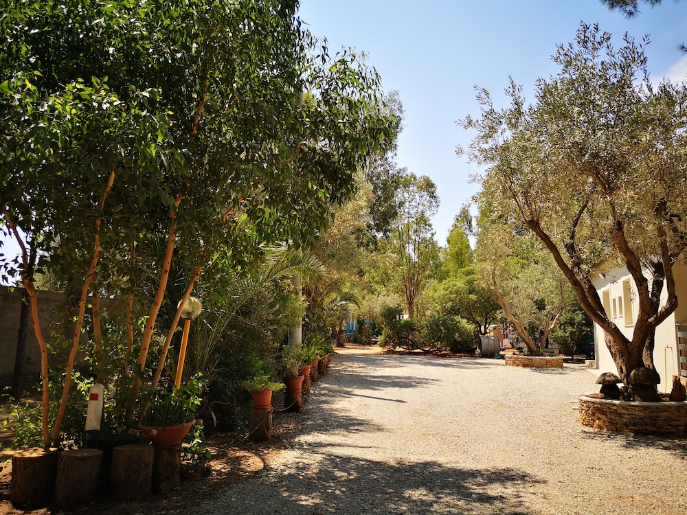 Camping Fico d'India