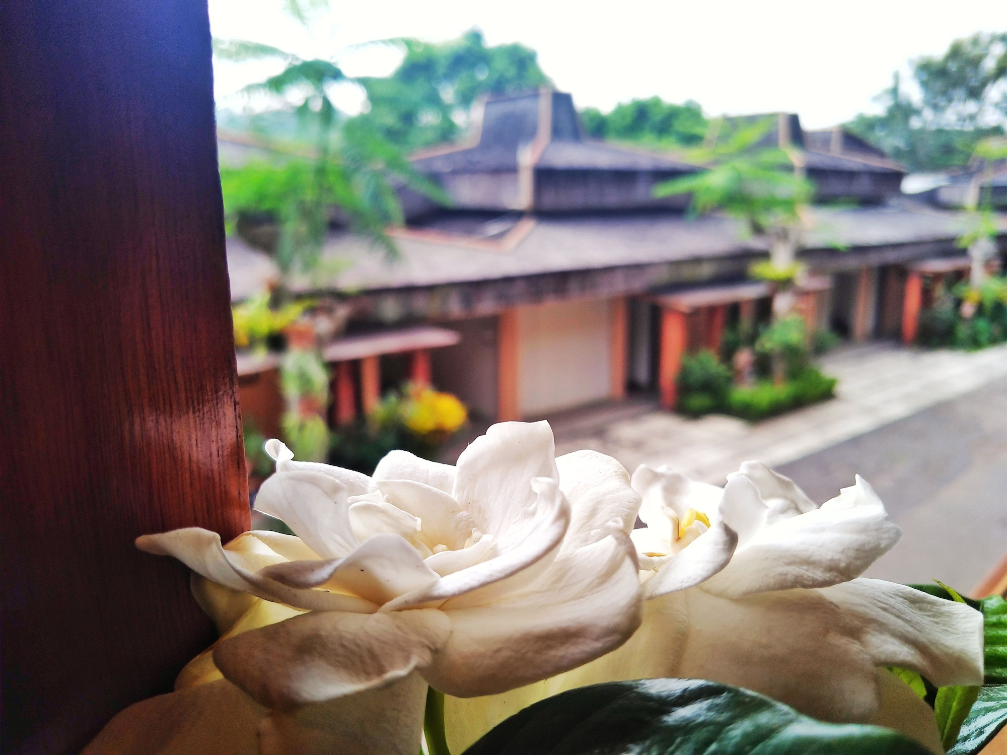 The Cipaku Garden, Bandung
