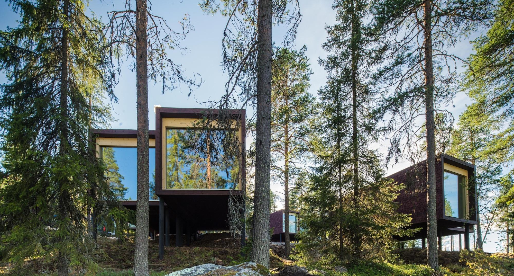 Arctic TreeHouse Hotel, Lapland