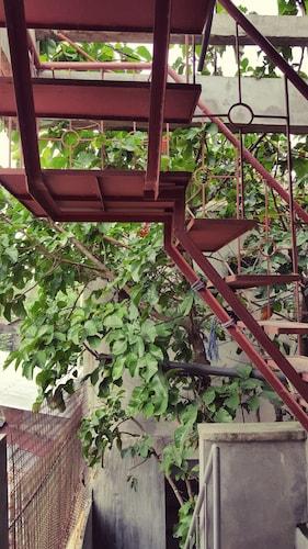 Mingle in Baler - Hostel, Baler