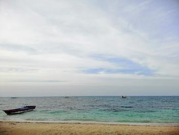 MABUHAY THRESHER DIVE Beach